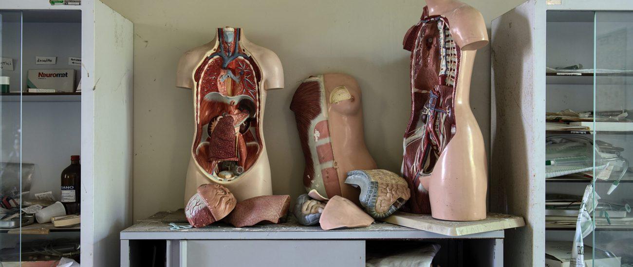 fabrica-organos-1